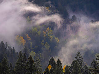 A Misty Fall Morning,San Juan Wilderness, Colorado