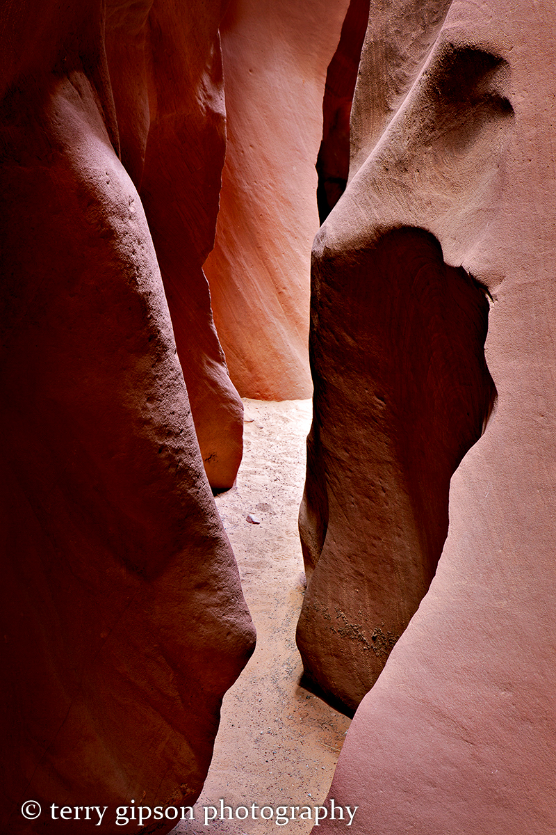 Antelope Canyons, Page, Arizona, photo